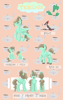 teacloud reference sheet by teabut