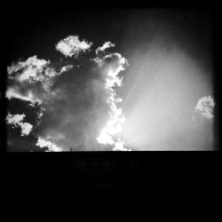 Rayons by hvwn