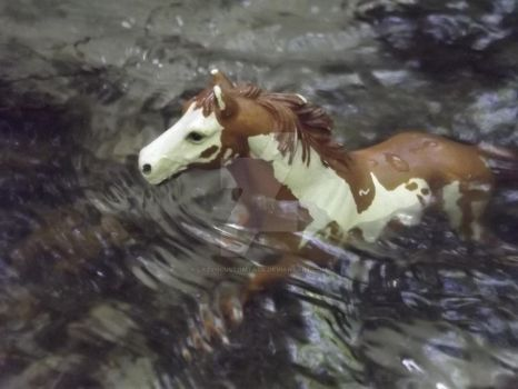 Head deep in rushing waters-Schleich by LazyHcustomtack