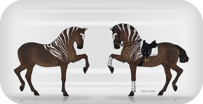 Equine Design Auction [OPEN][SB $5] by TheAdoptArtist