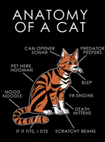 Anatomy of a Cat by artwork-tee