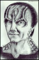 Delicious Cardassian by XiaoGui