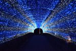 Tunnel Light by Muse-4-Life
