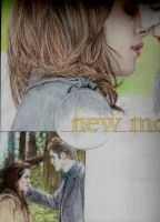 Twilight: New Moon wip 2 by Cam-e