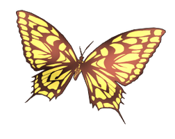 Butterfly PNG #1 by INDIGOgfxs