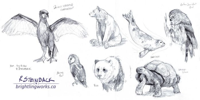 ROM Animal Sketches, August 2014 by brightling