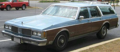 Oldsmobile Station Wagon 1975 by Hellsmith5