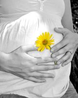 PREGNANCY FLOWER by JRMLPhotography