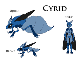Cyrid by RockoTheTaco
