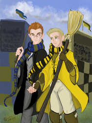 Ravenclaw and Hufflepuff  by Snow-Jackal