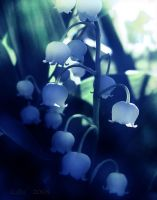Soft Shades of Blue by Callu
