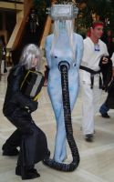 Cosplay Check:Family Reunion by Rhythm-Wily