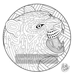 Amur leopard (The Exotic Colouring Book) by megcowley