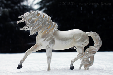 Lord of the Frost by TR-Ranch