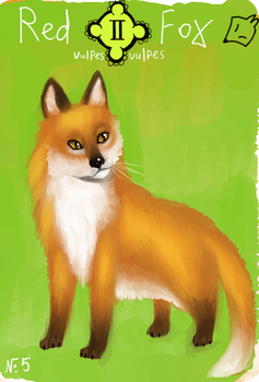 Animacards: Red Fox (#5) by HelgaDi