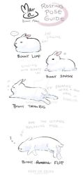 Maru's Bunny Relaxing Pose Guide by zeldacw