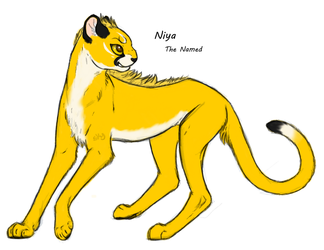 Niya The Named by The-Skykian-Archives
