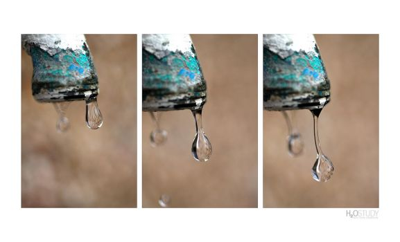 H2O Study (Print Available) by halo-monk
