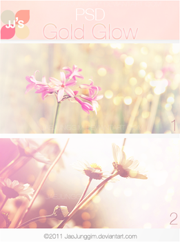 JJ's Gold Glow PSD by enhancers