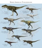North American Tyrannosaurs by PaleoGuy