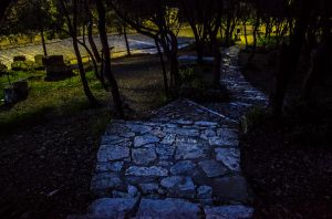 The light and the dark will show you your path by ginavd