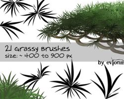 grassy brushes by evionn
