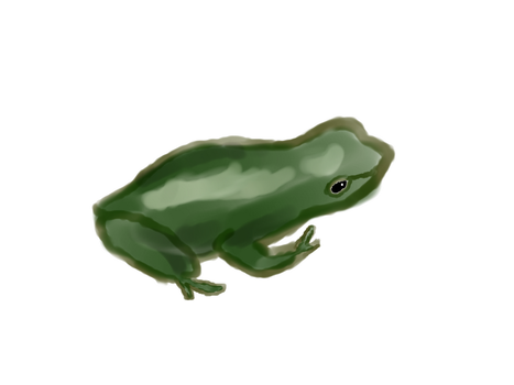 Frog For Lady by Shadened