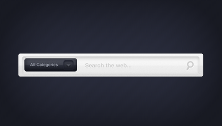 Wide Search Field .psd by emrah-demirag