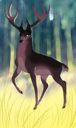 Commission Buck by dyb