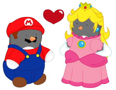 Mario and Peach by silver-vanargand