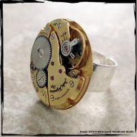 Steampunk Ring - Jules Jurgens by SoulCatcher06