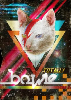 Totally Bowie by idaiku17