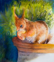 Card 12 Squirrel by EarlyOctober