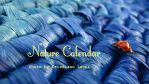 Nature Calendar by crisphotos