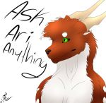 Ask Ari Anything by Redwolfless