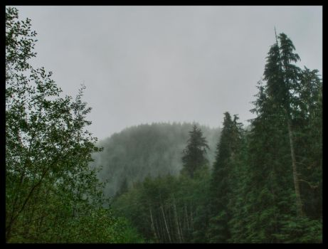 Mountain in the Mist by midnightstouch