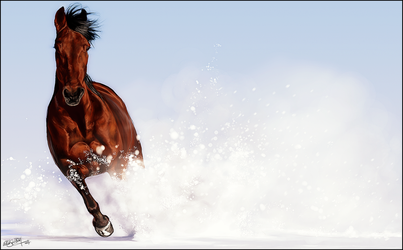 .:Snow Charge:. by WhiteSpiritWolf