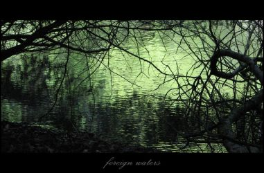 Foreign Waters by enervation