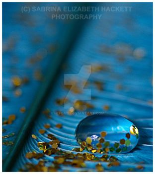 Droplet In Gold by Hitomii