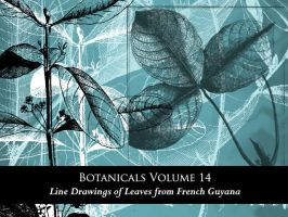 Botanicals Vol 14 by remittancegirl