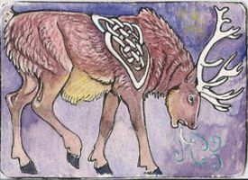 Red deer art card by sighthoundlady