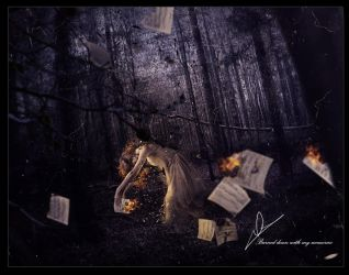 Burned down with my memories by Forjani