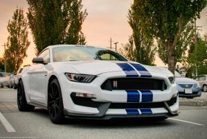 Sunset GT350 by SeanTheCarSpotter