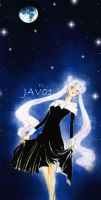 Sailor moon - usagi and the light of the night sky by zelldinchit
