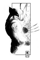 WOLVERINE COMMISSION by LeoColapietroArt