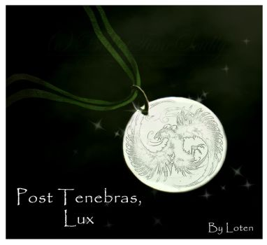 Post Tenebras, Lux - The Order of the Phoenix by BulletTimeScully