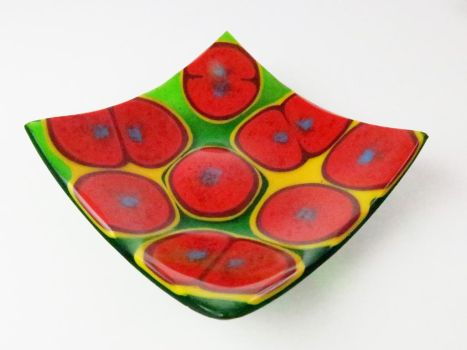 Staphylococcus aureus Bacteria Fused Glass Dish by trilobiteglassworks