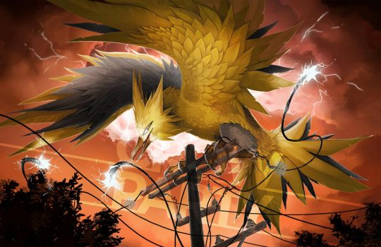 Zapdos by CrowParty