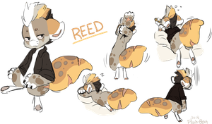Reed - sketch page by Plush-Bean