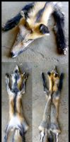 Cross fox SOLD by Tricksters-Taxidermy